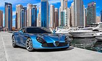 tablou sport car (7)