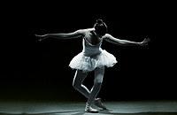 Tablou canvas balet (8)