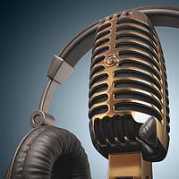 tablou microfon (3)