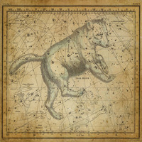 tablou star constellation, astrology map, 1820 (3)