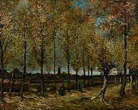 tablou van gogh - lane with poplars, 1885