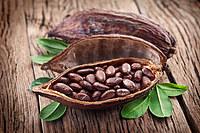tablou cacao (1)