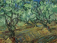 tablou van gogh - olive grove with blue sky, 1889