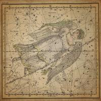 tablou star constellation, astrology map, 1820 (15)