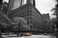Tablou canvas new york, taxi, bicolor (9)