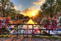 tablou amsterdam (33)