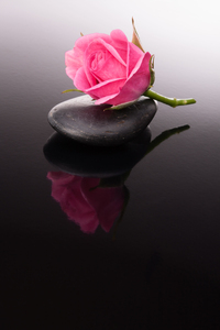 Tablou canvas zen, armonie (4)