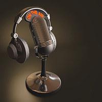Tablou canvas microfon (4)