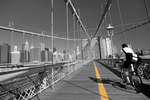 Tablou canvas new york 133(bicolor)