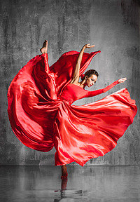 Tablou canvas flamenco (14)