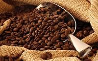tablou cafea (52)