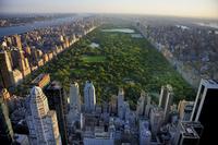 tablou central park, manhattan, new york (105)