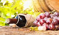 Tablou canvas vin (124)