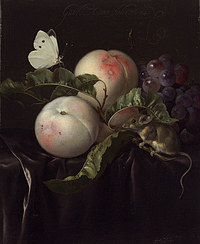 tablou willem van aelst - still life with peaches, grapes and mouse