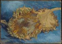 tablou van gogh - sunflowers, 1887