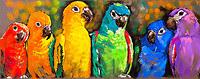 tablou papagali, reproducere pictura (1)