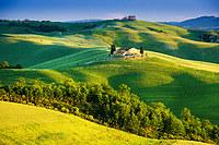 tablou toscana, italia (3)