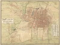 tablou ciudad de mexico, 1907