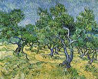 tablou van gogh - olive grove (1), 1889