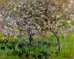 tablou claude monet   apple trees in bloom at giverny, 1900 01