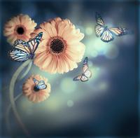 tablou flori si fluturi (41)