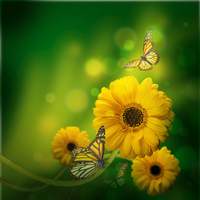 tablou flori si fluturi (40)