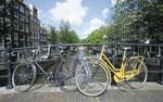 tablou amsterdam (22)