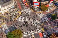 tablou tokyo, japonia (1)