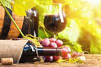 tablou vin (122)