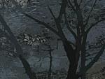 Tablou canvas Natura abstract