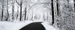 Tablou canvas Iarna (2)