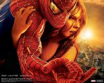 tablou Spiderman II