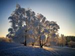 tablou Iarna 6