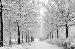 Tablou canvas Iarna 13