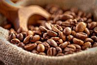 tablou cafea (249)