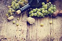 tablou vin (126)