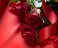Tablou canvas trandafiri (42)