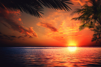 Tablou canvas apus de soare (139)