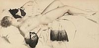 tablou nud, 66