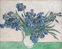 tablou van gogh - irises, 1890 (1)