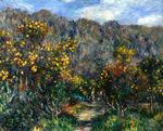 tablou renoir - landscape with mimosas, 1912