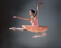 Tablou canvas balet (9)