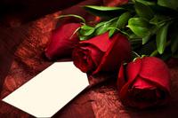 Tablou canvas trandafiri (40)