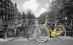 tablou amsterdam bicolor (1)