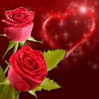 tablou trandafiri (41)