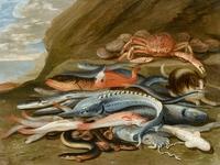 Tablou canvas jan van kessel the elder - still life with fish
